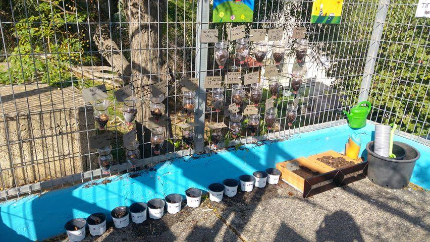 ילדי גן גלים בחיפה יצרו גינה מיוחדת משלהם